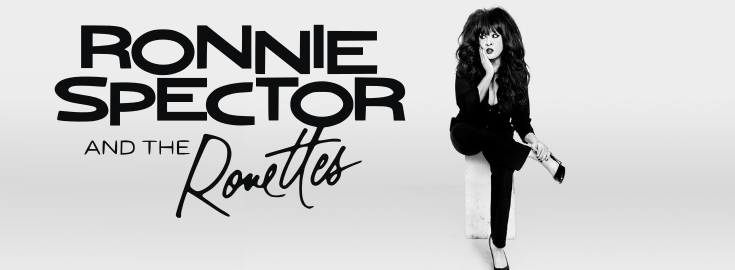 Ronnie Spector photo Banner